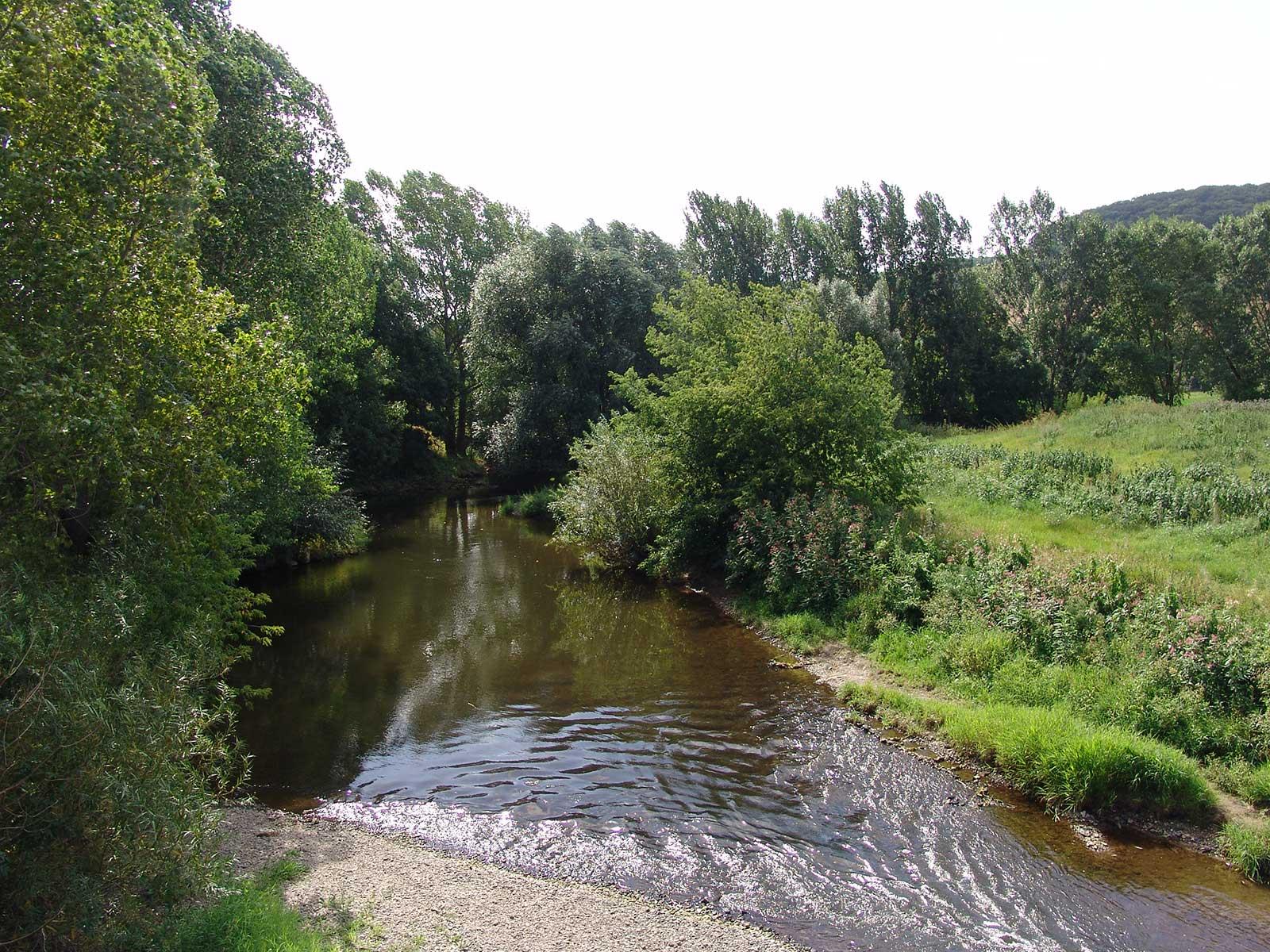 Wir wollen, dass unsere Flüsse sauber bleiben. Jährlich legen wir Rechenschaft ab über unsere Arbeit.