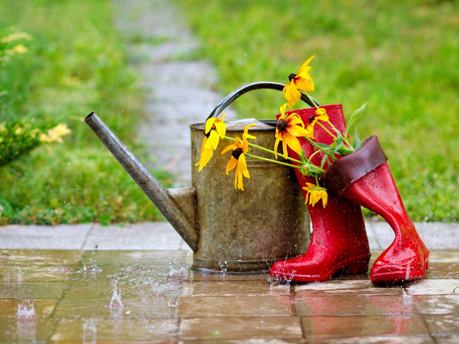 Für die Ableitung des Regenwassers von Ihren bebauten Flächen erheben wir seit 2004 Gebühren.