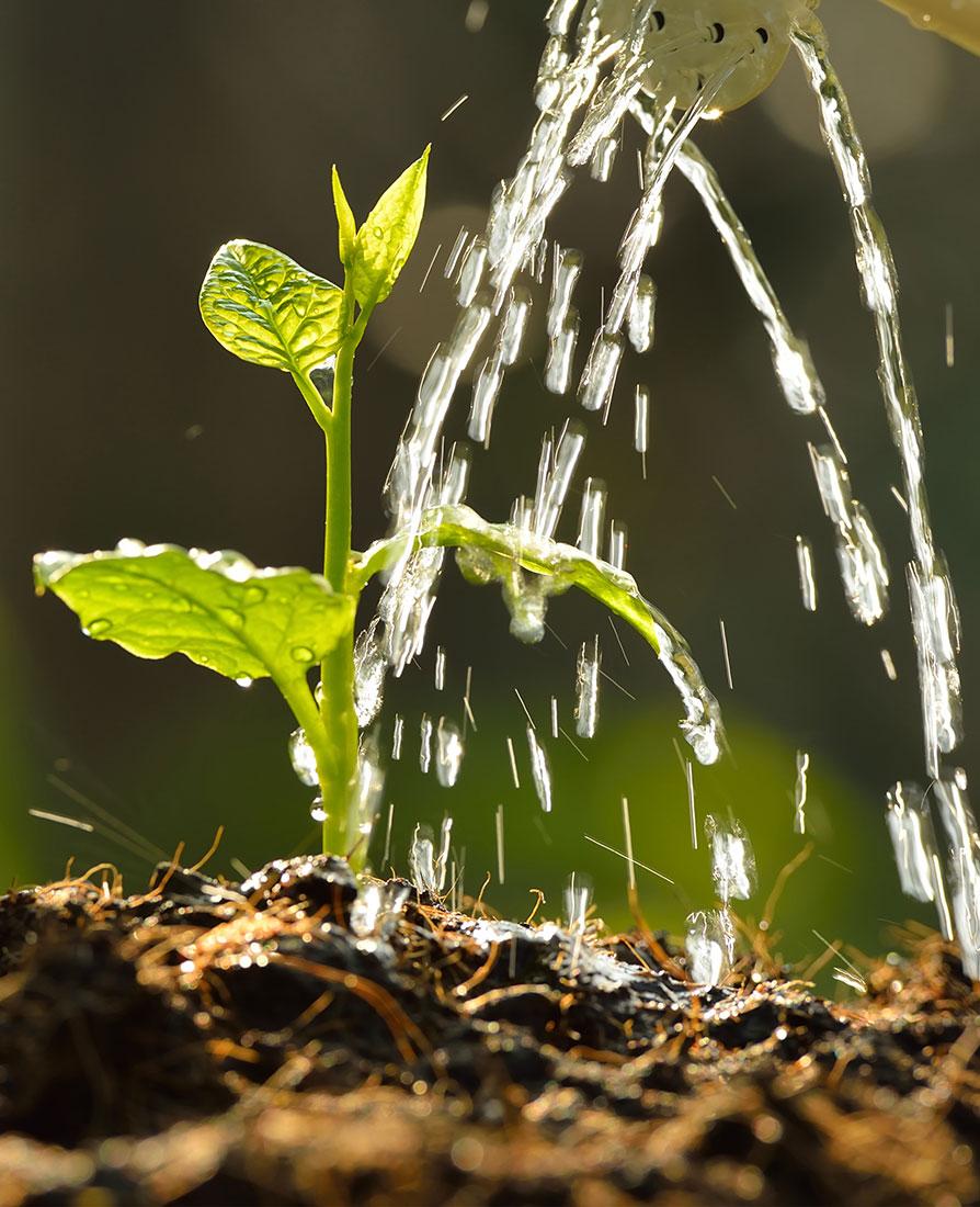 Die Einleitungsgebühr für Niederschlagswasser wird jährlich erhoben. Sie richtet sich nach der versiegelten und an die öffentliche Entwässerungseinrichtung angeschlossenen Grundstücks- bzw. Straßenfläche in Quadratmetern.